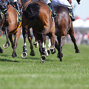 Horses hooves kick up the turf during a day at the Races at Ascot Park, Invercargill, Southland, New Zealand. 10th December 2011. Photo Tim Clayton