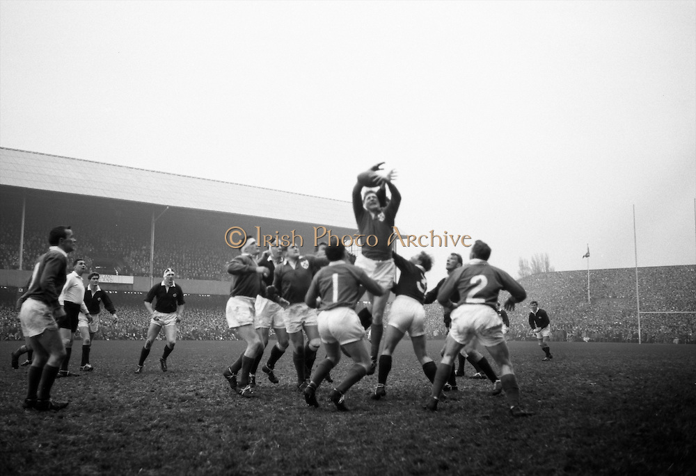 McBride, Ireland, and Campbell-Lamerton, Scotland, go highest in this line out jump, .Players included, left-right, Irish captain Mulcahy, McLoughlin, Dwyer and Dawson, Ireland, and Scootish, Neill and Bruce, ..Irish Rugby Football Union, Ireland v Scotland, Five Nations, Landsdowne Road, Dublin, Ireland, Saturday 22nd February, 1964,.22.2.1964, 22.2.1964,..Referee- A C Luff, Rugby Football Union, ..Score- Ireland 3 - 6 Scotland, ..Irish Team, ..T J Kiernan,  Wearing number 15 Irish jersey, Full Back, Cork Constitution Rugby Football Club, Cork, Ireland,..P J Casey, Wearing number 14 Irish jersey, Right Wing, University College Dublin Rugby Football Club, Dublin, Ireland, ..M K Flynn, Wearing number 13 Irish jersey, Right Centre, Wanderers Rugby Football Club, Dublin, Ireland, ..J C Walsh,  Wearing number 12 Irish jersey, Left Centre, University college Cork Football Club, Cork, Ireland,..K J Houston, Wearing number 11 Irish jersey, Left Wing, Queens University Rugby Football Club, Belfast, Northern Ireland,..C M H Gibson, Wearing number 10 Irish jersey, Stand Off, Cambridge University Rugby Football Club, Cambridge, England, and, N.I.F.C, Rugby Football Club, Belfast, Northern Ireland, ..J C Kelly, Wearing number 9 Irish jersey, Scrum Half, University College Dublin Rugby Football Club, Dublin, Ireland,..P J Dwyer, Wearing number 1 Irish jersey, Forward, University College Dublin Rugby Football Club, Dublin, Ireland, ..A R Dawson, Wearing number 2 Irish jersey, Forward, Wanderers Rugby Football Club, Dublin, Ireland, ..R J McLoughlin, Wearing number 3 Irish jersey, Forward, Gosforth Rugby Football Club, Newcastle, England, ..W A Mulcahy, Wearing number 4 Irish jersey, Captain of the Irish team, Forward, Bective Rangers Rugby Football Club, Dublin, Ireland,  ..W J McBride, Wearing number 5 Irish jersey, Forward, Ballymena Rugby Football Club, Antrim, Northern Ireland,..E P McGuire, Wearing number 6 Irish jersey, Forward, University college Galway Football Club, Galw