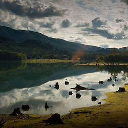 Stumps in Riffe Lake, Randle, Washington, US