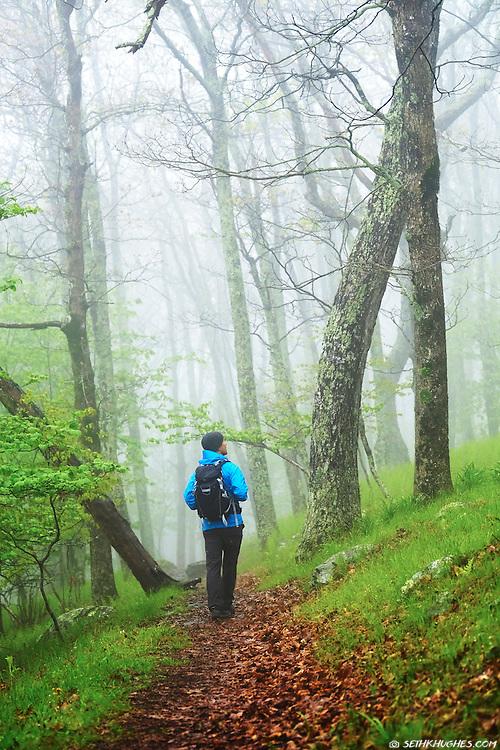 A man hiking through a foggy atmosphere on the Appalachian Trail in Shenandoah National Park, Virginia.