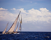 Kate sailing in the Antigua Classic Yacht Regatta, Cannon Race.