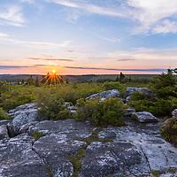 Bear Rocks sunset flagged spruce tree and rocks at beautiful sunset