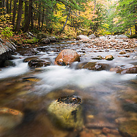 Fall color along the Swift River in Big Pines Natural Area, Tamworth, NH