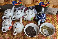 Ouzbekistan, region de Fergana, Marguilan,  Tchaikhana, maison de thé traditionnelle // Uzbekistan, Fergana region, Marguilan, Tchaikhana, traditional tea house