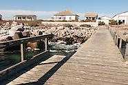 Malgas Island