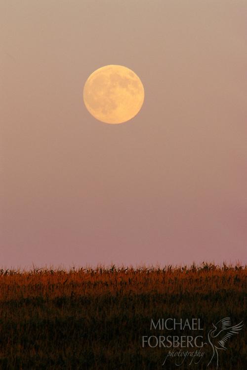 A full moon in Southeast Nebraska.