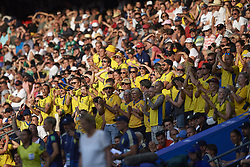 June 29, 2019 - Rennes, France - Supporters of Sweden celebrate victory after the 2019 FIFA Women's World Cup France Quarter Final match between Germany and Sweden at Roazhon Park on June 29, 2019 in Rennes, France. (Credit Image: © Jose Breton/NurPhoto via ZUMA Press)