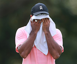September 20, 2018 - Atlanta, GA, USA - Tiger Woods towels off in the fairway on the third hole during the first round of the Tour Championship at East Lake Golf Club on Thursday, Sept. 20, 2018, in Atlanta, Ga. (Credit Image: © Curtis Compton/Atlanta Journal-Constitution/TNS via ZUMA Wire)