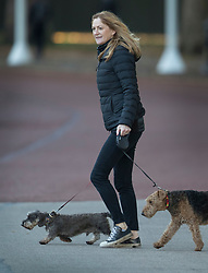 © Licensed to London News Pictures. 29/10/2018. London, UK. Susan Hammond, wife of the Chancellor of the Exchequer Philip Hammond, walks the family dogs from the back of Downing Street. Later today the Chancellor will deliver his Autumn Budget to Parliament. Photo credit: Peter Macdiarmid/LNP