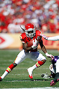 Kansas City Chiefs running back Dexter McCluster (22) runs for a gain of five yards in the second quarter during the NFL week 4 football game against the Minnesota Vikings on Sunday, October 2, 2011 in Kansas City, Missouri. The Chiefs won the game 22-17. ©Paul Anthony Spinelli