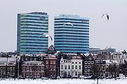 De Zijpendaalseweg in Arnhem, gezien vanaf het Sonsbeekpark. In de achtergrond staan de Parktoren (links), waarin het hoofdkantoor van Essent is gevestigd, en de Rijntoren (rechts), waar het WTC en de Raad van Bestuur van ingenieursbureau Arcadis zetelen.<br /> <br /> The Zijpendaalseweg in Arnhem, seen from Sonsbeekpark. In the background are the Parktower (left), where the headquarters of Essent is situated, and the Rijntower, with the WTC and the board of Arcadis Engineering.