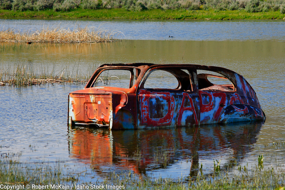 IDAHO. Carey. Old rusted car wreck in a marshy pond in spring. #ta060100