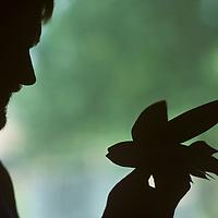 USA, Maryland, Tilghman Island, (MR) Silhouette of Chesapeake Bay decoy carver Dan Vaughan in his workshop