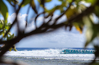 Jason McCaffrey getting some morning waves. French Polynesia