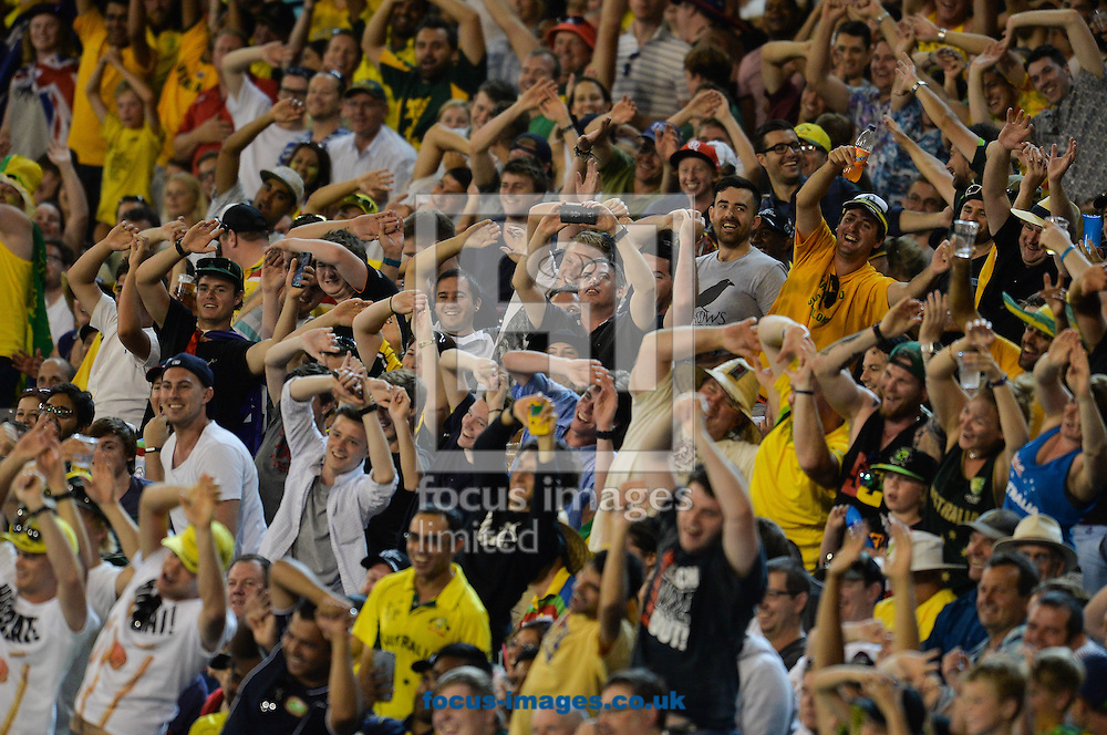 Australia fan show their support during the 2015 ICC Cricket World Cup match at Melbourne Cricket Ground, Melbourne<br /> Picture by Frank Khamees/Focus Images Ltd +61 431 119 134<br /> 14/02/2015