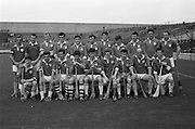 17/08/1969<br /> 08/17/1969<br /> 17 August 1969<br /> All-Ireland Junior Semi-Final: Kerry v Louth at Croke Park, Dublin.<br /> Louth junior hurling team.