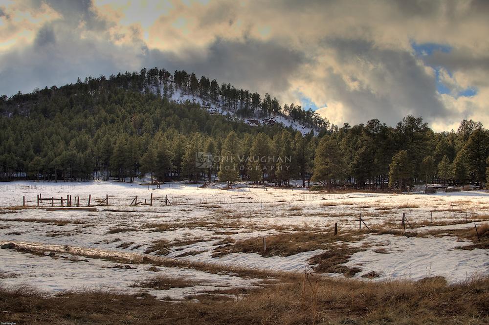 Snow covered mountain near Williams, Arizona.