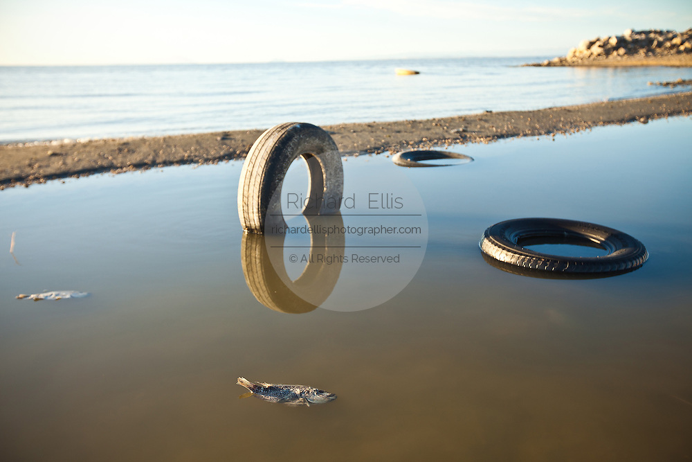 Tires and other trash litter the coast of the Salton Sea at sunrise Imperial Valley, CA.