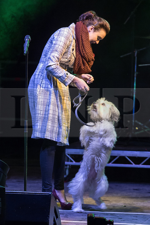 © Licensed to London News Pictures . 08/11/2013 . Manchester , UK . ASHLEIGH AND PUDSEY . The stage in Albert Square in Manchester in front of the Town Hall . The Christmas lights are turned on in Manchester this evening (Friday 8th November 2013) . Photo credit : Joel Goodman/LNP