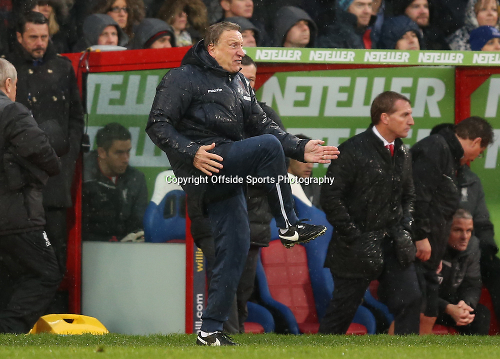 23 November 2014 - Barclays Premier League - Crystal Palace v Liverpool - Neil Warnock manager of Crystal Palace reacts on the touchline - Photo: Marc Atkins / Offside.