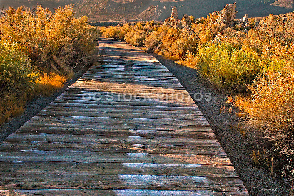 Old Marina Boardwalk at Mono Lake