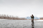 A fly fisherman plays a brown trout during a winter day on the South Fork of the Snake River, Idaho.