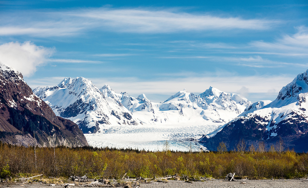 Sheridan Glacier and the Chugach National Forest adorn the Copper River Delta near Cordova in Southcentral Alaska. Spring. Morning.