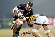 Zebre Rugby v London Wasps - European Championship