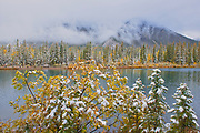 Snow and autumn colors along Lorette Ponds <br />