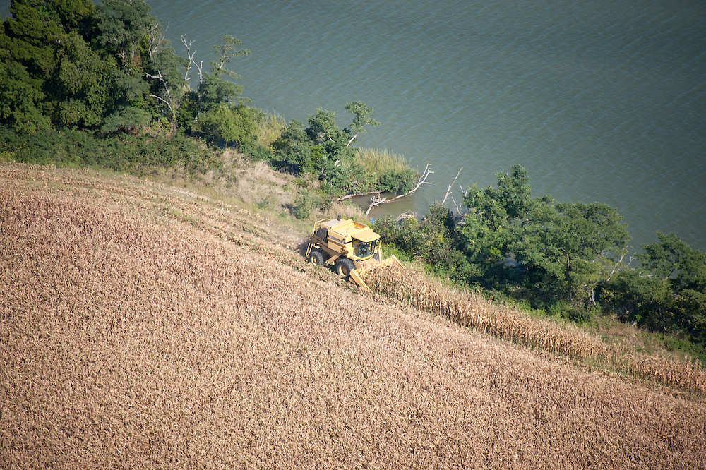 Aerials of combine harvesting corn near Chesapeake Bay at  St. Michaels Maryland