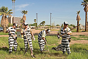 "24 MARCH 2004 - PHOENIX, AZ, USA: Members of the Maricopa County Jail's Juvenile Chain Gang clean up a vacant lot a worksite in Phoenix, AZ, March 24, 2004. The juveniles volunteer to serve Maricpoa County Sheriff Joe Arpaio's chain gang. The sheriff, who claims to be ""the toughest sheriff in America,"" has chain gangs in both the men's and women's jails and now has a chain gang for juveniles sentenced and serving time as adults in the county jail system. The sheriff claims it is the only juvenile chain gang in the country.   PHOTO BY JACK KURTZ"