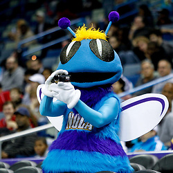 December 17, 2011; New Orleans, LA, USA; New Orleans Hornets mascot Hugo films with a video camera during a team scrimmage at the New Orleans Arena.   Mandatory Credit: Derick E. Hingle-US PRESSWIRE
