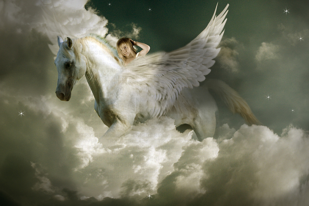 child riding winged horse
