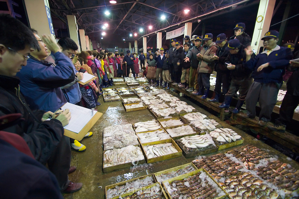 Jagalchi Fish Market. The fish auction at 5:00 AM.