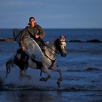 Maori surfer on horse, Whanagara, New Zealand