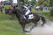 ANNIE CLOVER ridden by Nicola Wilson at Bramham International Horse Trials 2016 at  at Bramham Park, Bramham, United Kingdom on 11 June 2016. Photo by Mark P Doherty.