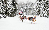 Musher John Erhart competing in the Fur Rendezvous World Sled Dog Championships at Goose Lake in Anchorage in Southcentral Alaska. Winter. Afternoon.