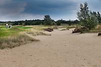 HEELSUM - S6 , Heelsumse Golf Club. COPYRIGHT KOEN SUYK