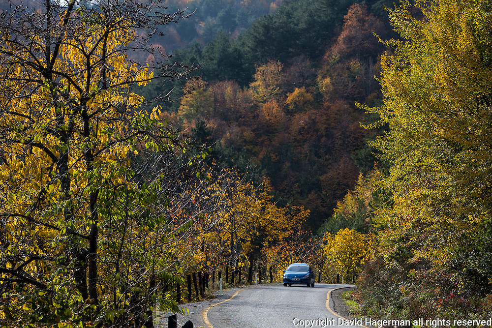 On the road just outside Inebolu.