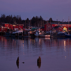 Jessie's Ilwaco Fish Co. at Dawn at Ilwaco Harbor, Ilwaco, Washington, US