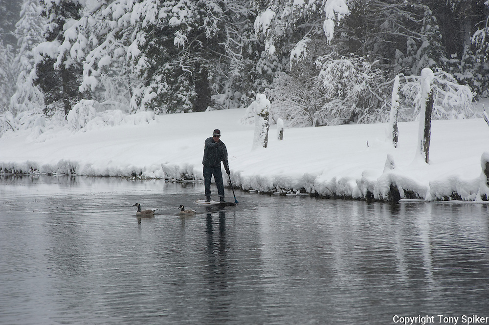 """""""Winter SUP on the Truckee River 9"""" - Peter Spain Stand Up Paddleboarding on the Truckee River"""