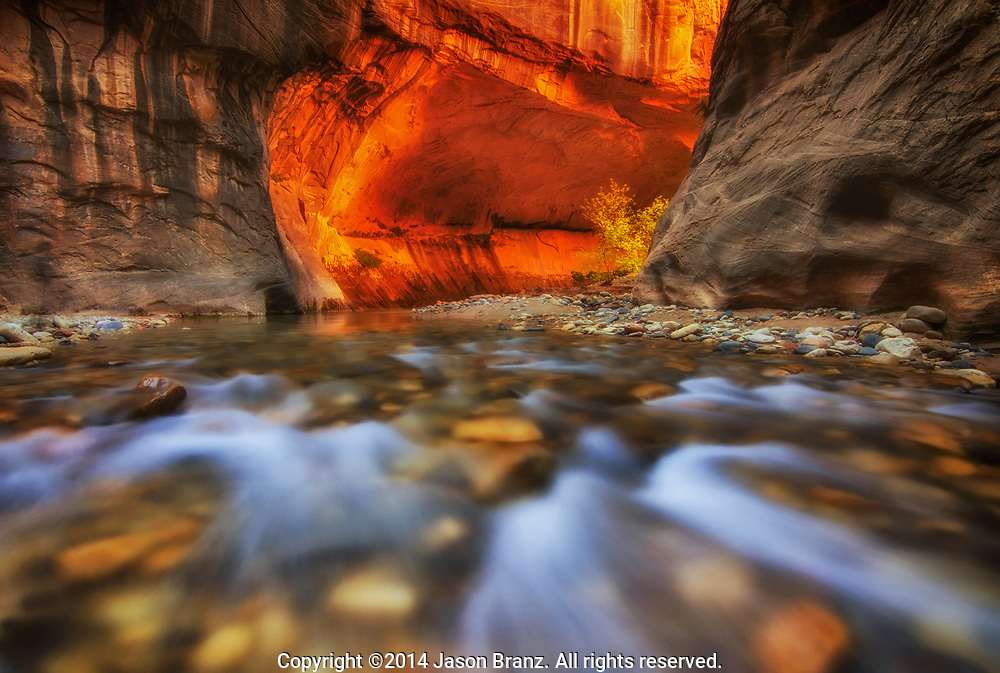 The Virgin River in the Narrows, Zion National Park, Utah.