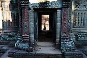Ta Prohm, Angkor temples, Siem Reap, Cambodia