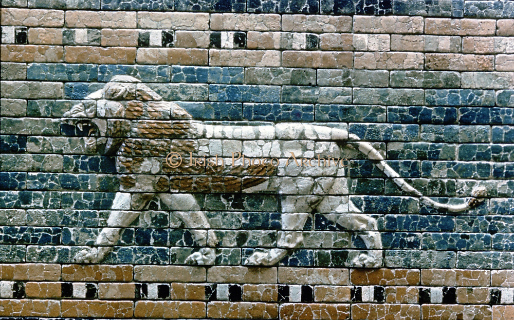 Glazed terracotta lion from the  processional way from the Temple of Marduk to the Ishtar Gate, one of the eight  fortified gates of Nebuchandrezzar's (Nebuchanezzar) city of Babylon. Neo-Babylonian c575 BC.