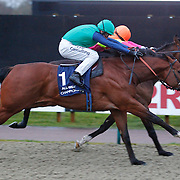 Bayre and Jim Crowley winning the 4.45 race