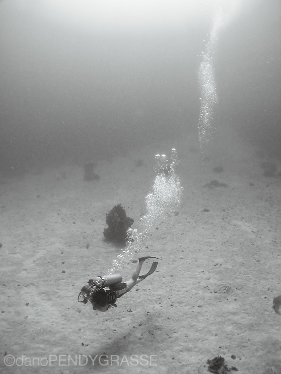 A girl scuba dives over the sand near Roatan, Honduras.