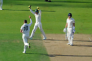 Wicket - Peter Siddle of Australia celebrates taking the wicket of Joe Denly of England during the 5th International Test Match 2019 match between England and Australia at the Oval, London, United Kingdom on 14 September 2019.
