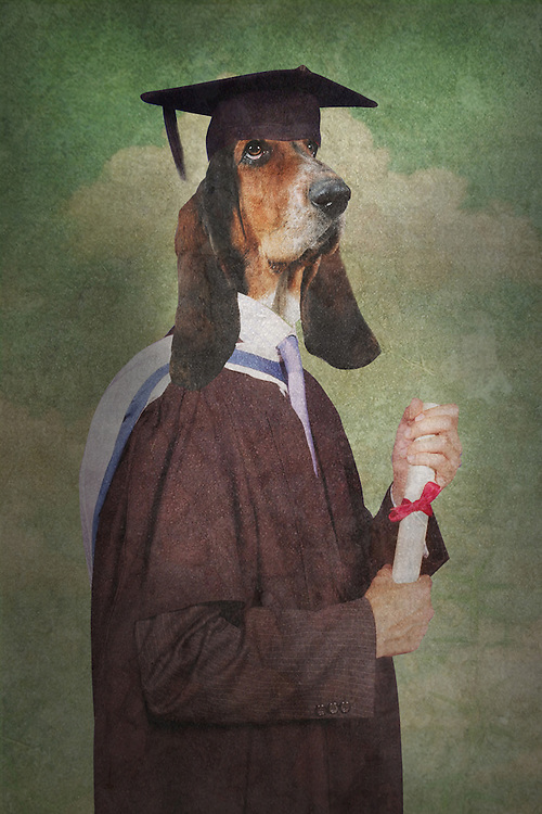 fantasy graduation scene where the student has the head of a dog