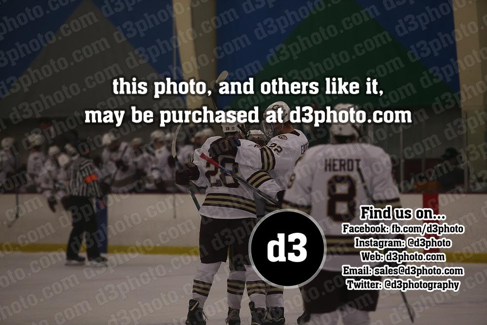 Men's Ice Hockey: Concordia College, Moorhead Cobbers vs. Saint Mary's University (Minn.) Cardinals