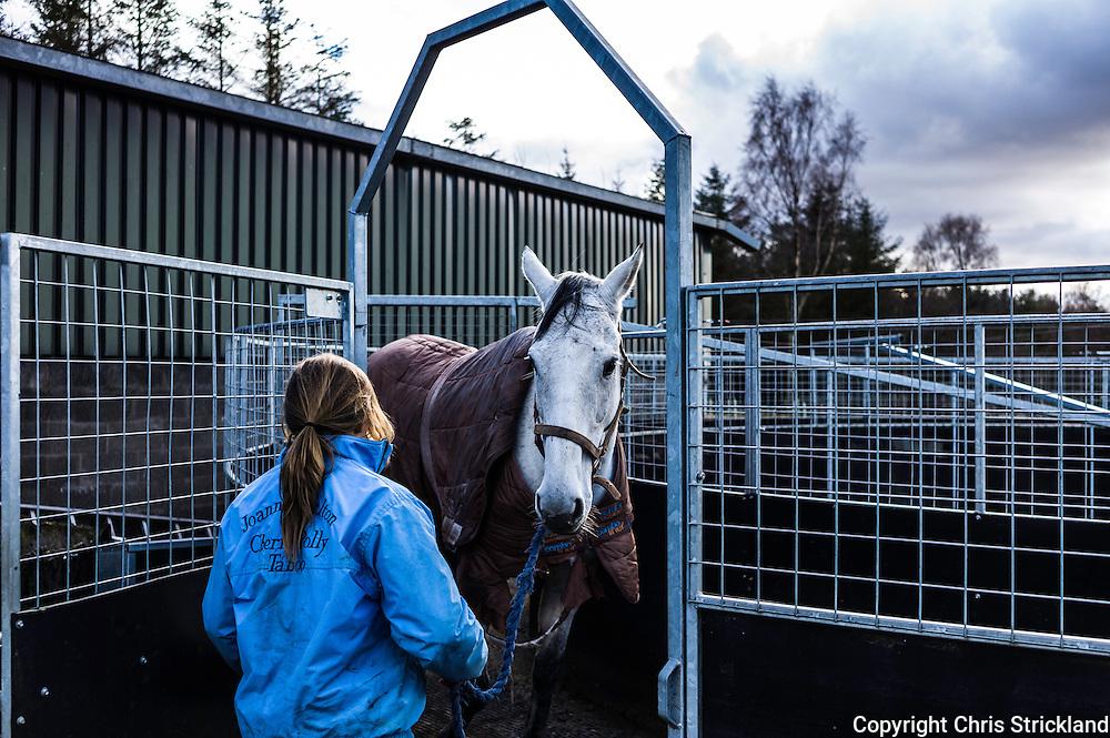 Bonchester Bridge, Hawick, Scotland, UK. 23rd February 2016. Jockey Joanna Walton leads racehorse Carters Rest out of a horse walker.